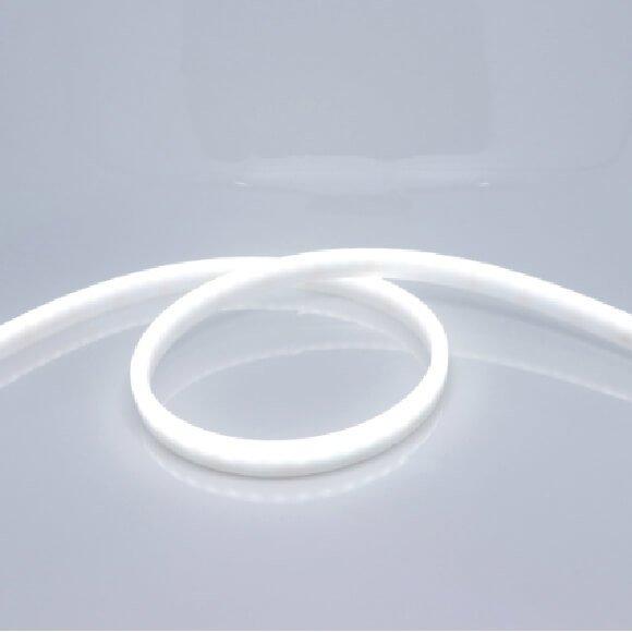 LED Strip Light NEON STRIP LED 220V
